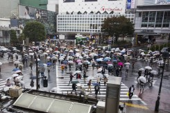 The world's busiest crosswalk is Shibuya Crossing in Tokyo.