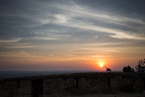 A beautiful sunset and a monkey. Photo by Jon Glassberg (LT11).