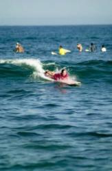 Paddle, paddle, paddle...