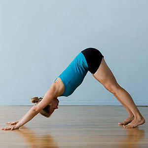 yoga poses  positions  free yoga exercises for beginners