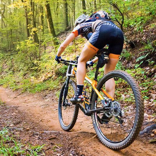 Back of woman mountain biking