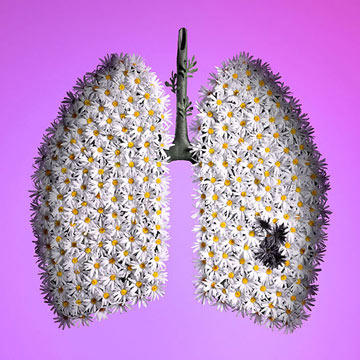 Lung Cancer Risks for Nonsmokers: How to Protect Yourself